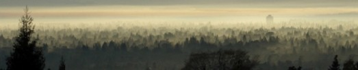cropped-redwoodcityca645am.jpg