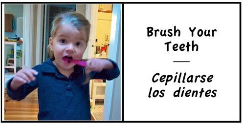6 brush teeth