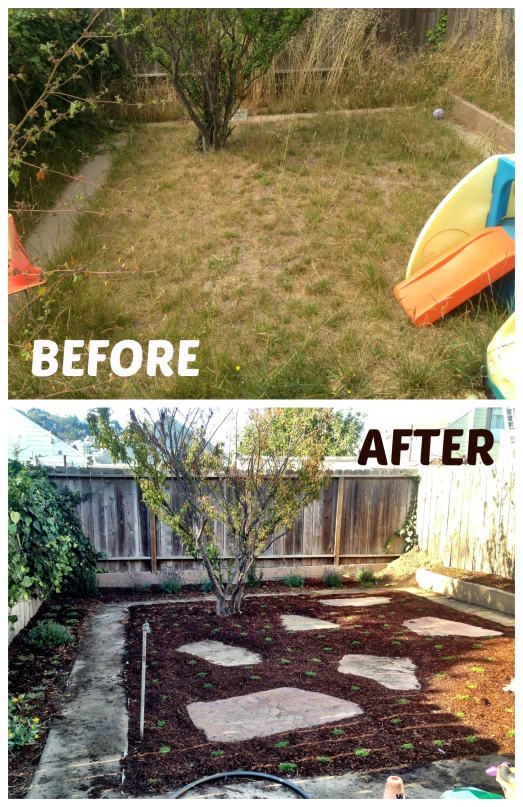 Yard before after
