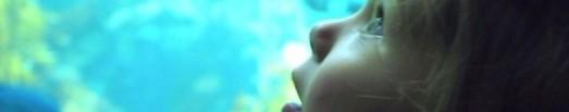 cropped-aquarium.jpg
